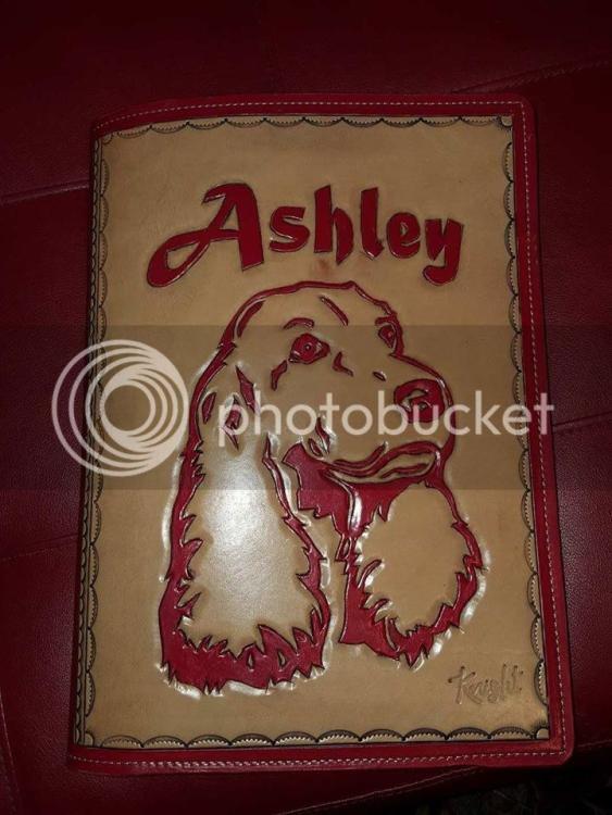 ashley%20cover_zpswvsyrpvr.jpg