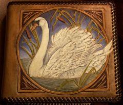 Crystal's Swan Photo Album