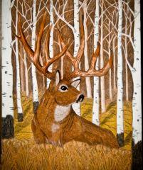Whitetail Deer-  Aspen Apparition