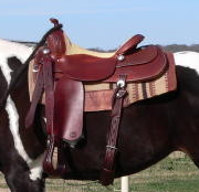 Close up of Tim McQuay Saddle.jpg