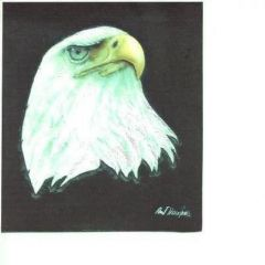 eagle scan.jpg