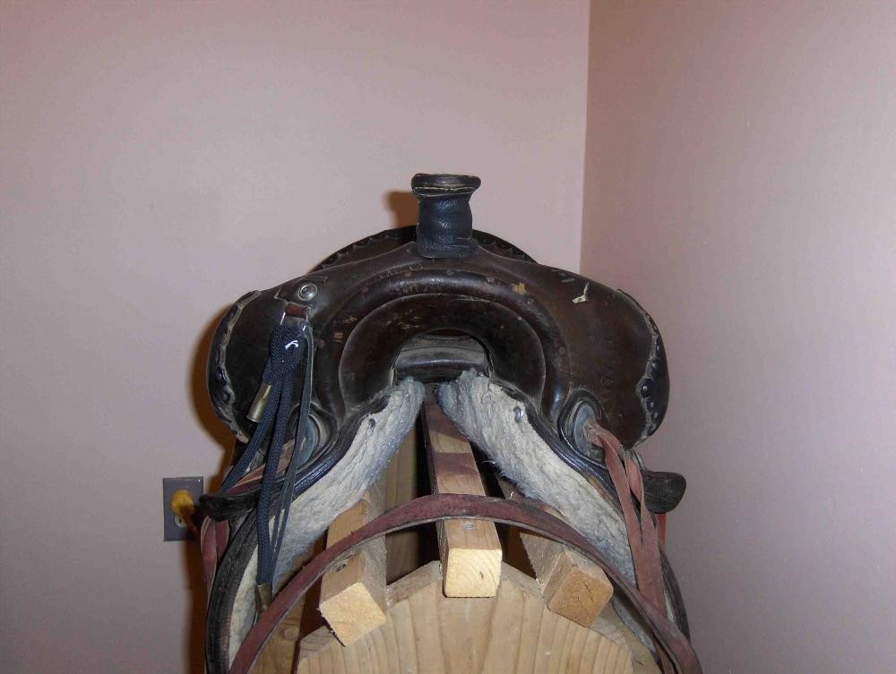 saddle small 2.jpg
