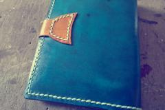 passport holder for frequent travelers