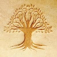 drzewo1.jpg.1cf7a057620fd3b2e3e57280d66e09d5.jpg
