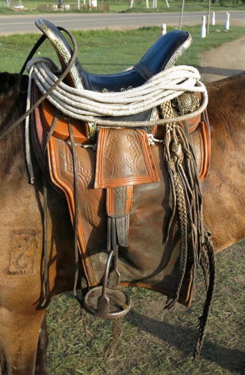 mongol saddle 3.jpg