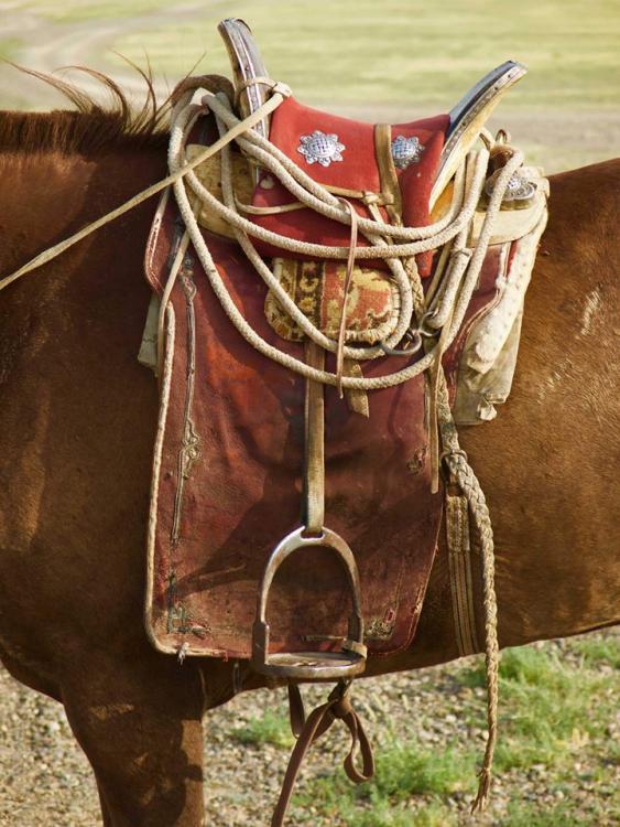 mongol saddle 1.jpg