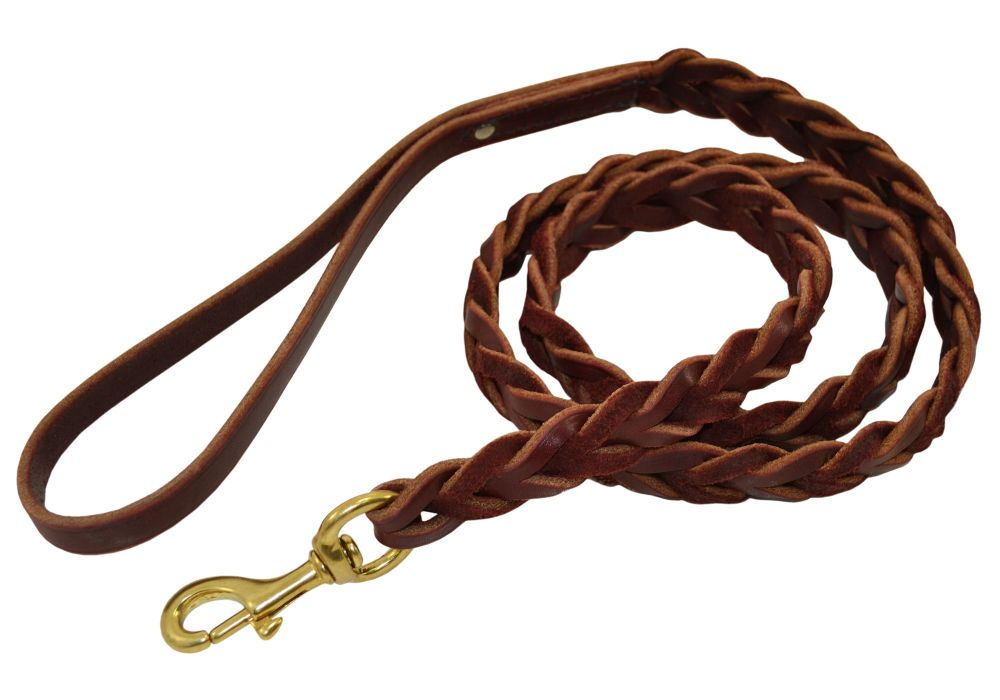 Slot Braid Leash.jpg