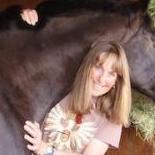 harryhorse
