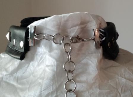collar 1A.jpg