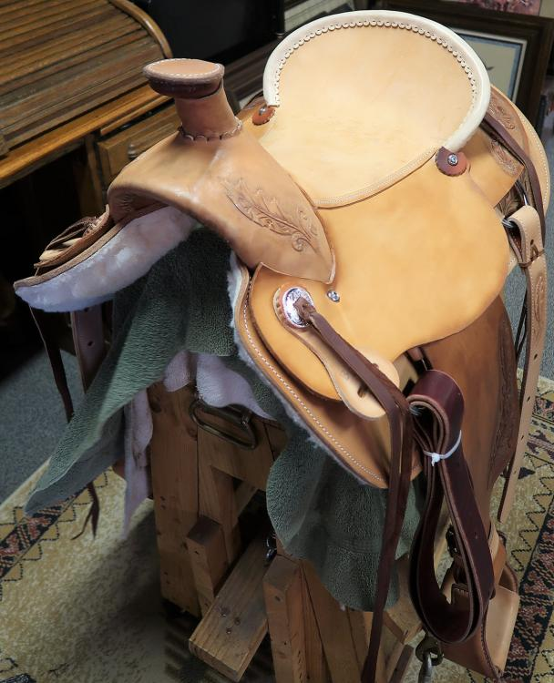 First Saddle - front-near-side.jpg