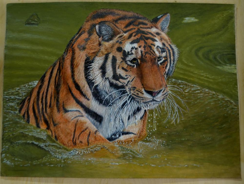 Tiger_m.JPG