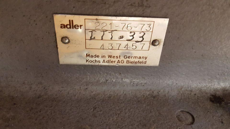 adler3.jpg